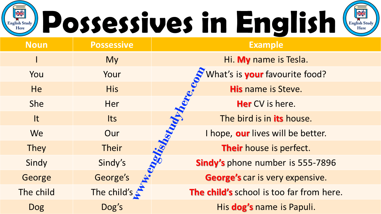 possessives in english