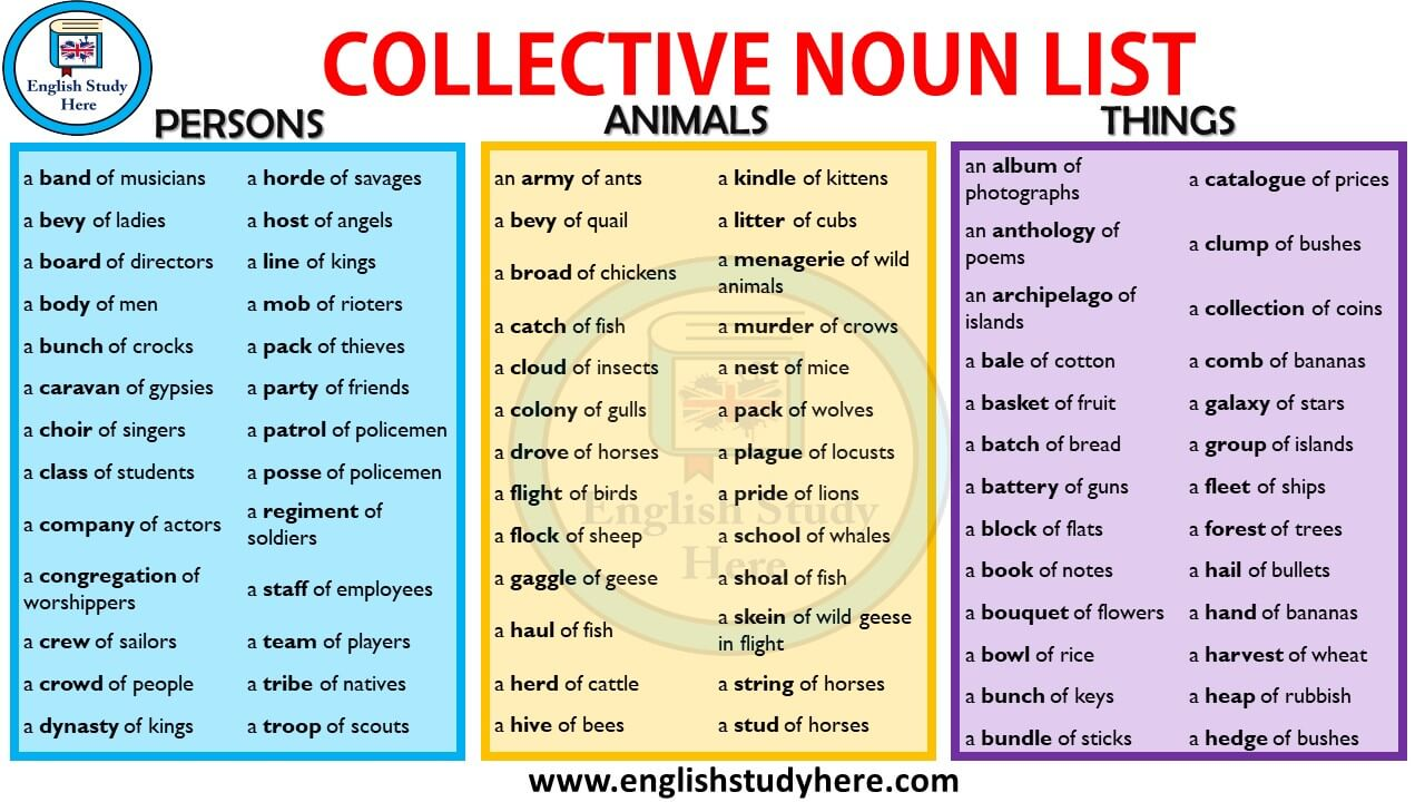 Collective Nouns List in English - English Study Here
