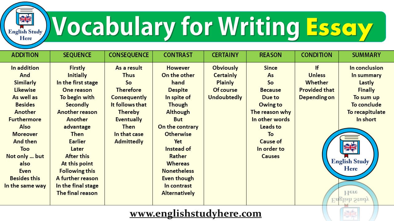 Write essay in english