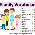Family Vocabulary in English