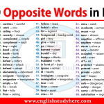 100 Opposite Words in English