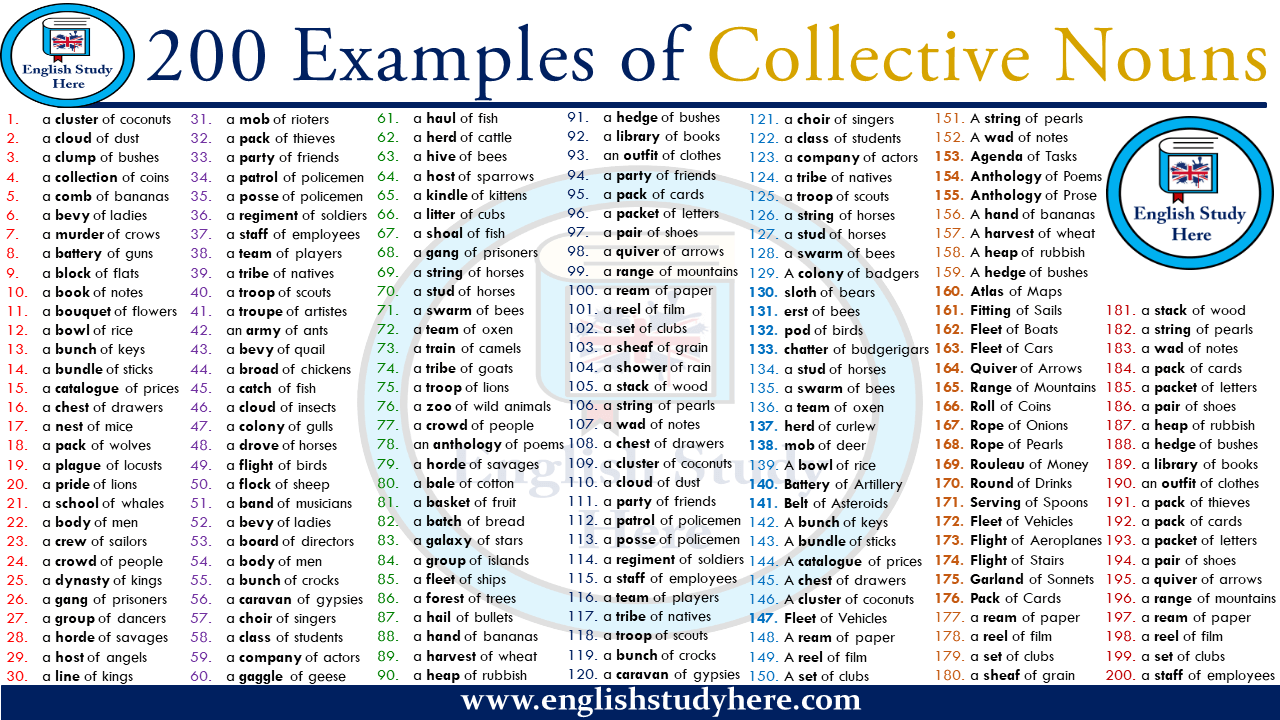 200 Examples of Collective Nouns