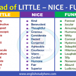 Instead of LITTLE – NICE - FUNNY