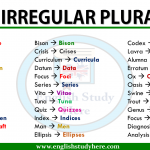 Irregular plurals in english