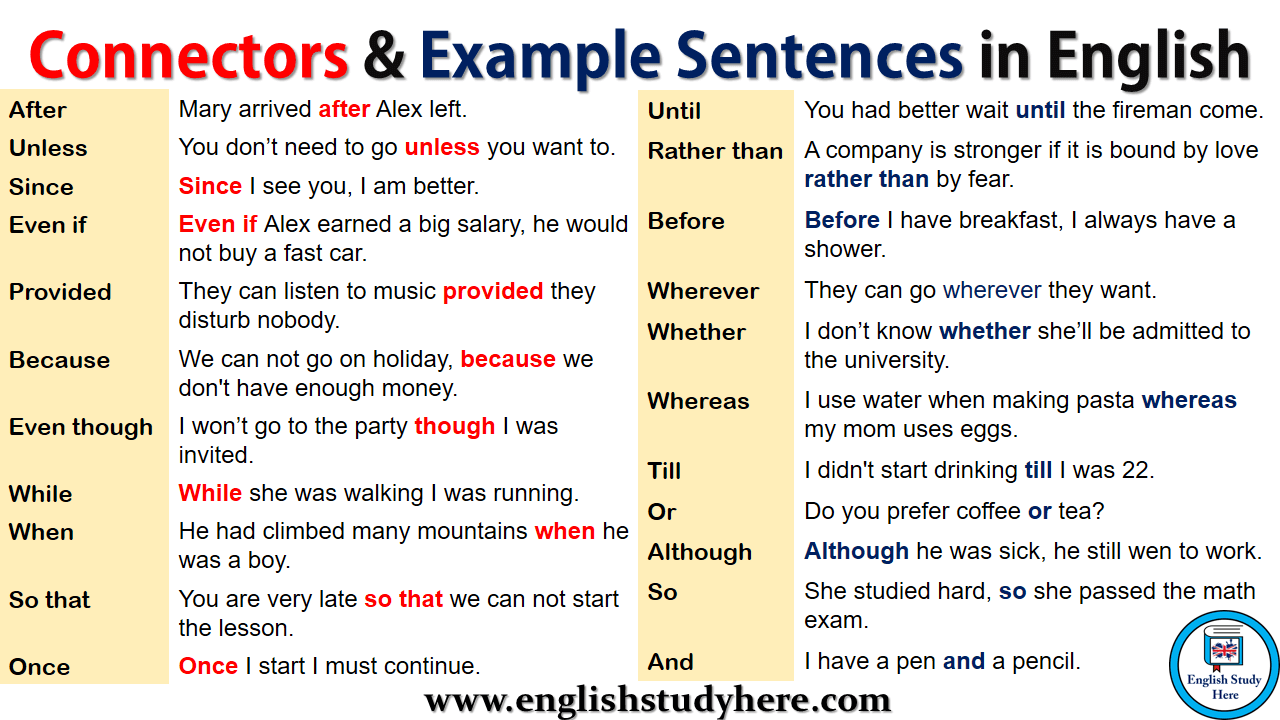 Connectors & Example Sentences in English