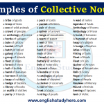 Examples of Collective Nouns List