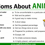 Idioms About ANIMALS