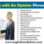 Agreeing with An Opinion Phrases