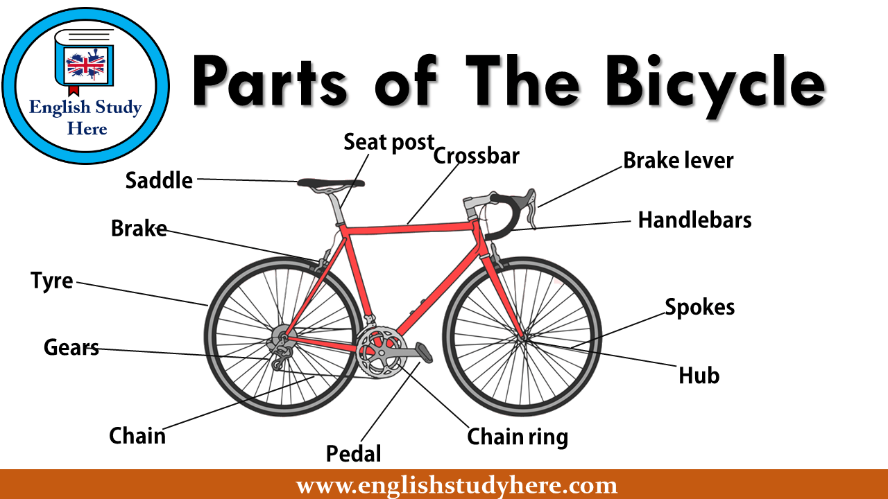 Parts Of The Bicycle English Study Here