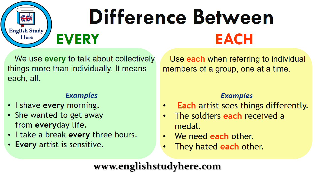 Difference Between EVERY and EACH - English Study Here