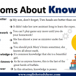 Idioms About Knowledge in English