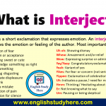 What is Interjection