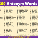 300 Antonym Words List in English
