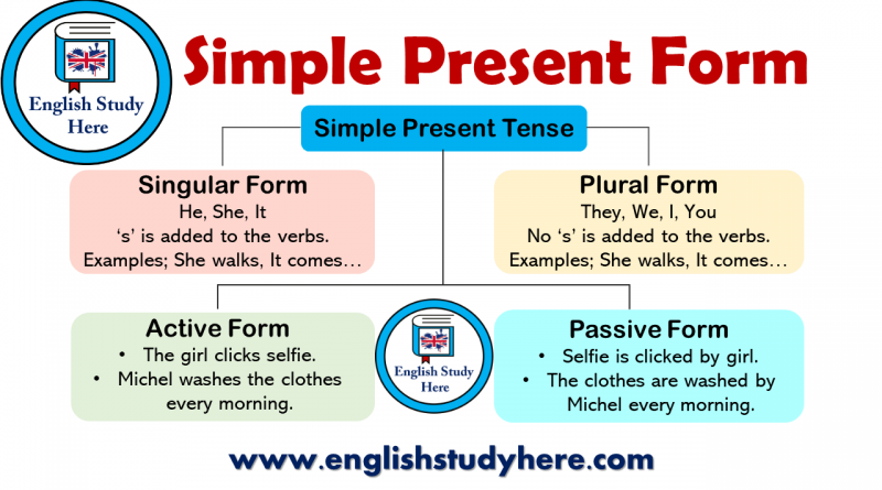 Simple Present Form in English