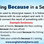 Using Because in a Sentence