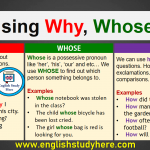 Using Why, Whose, How in English