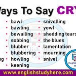 Ways To Say CRY