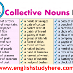 Detailed Collective Nouns List in English