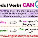 Using Modal Verbs CAN in English