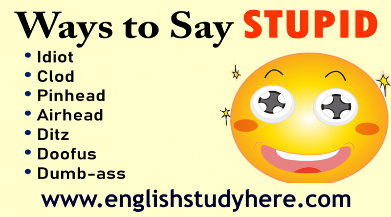 27 Ways to Say STUPID in English